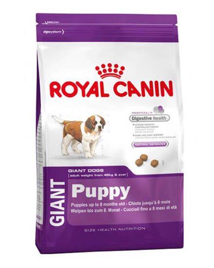 Picture of RCVCN PUPPY GIANT DOG