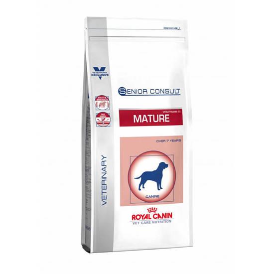 Picture of RCVCN SENIOR CONSULT MAT M/DOG